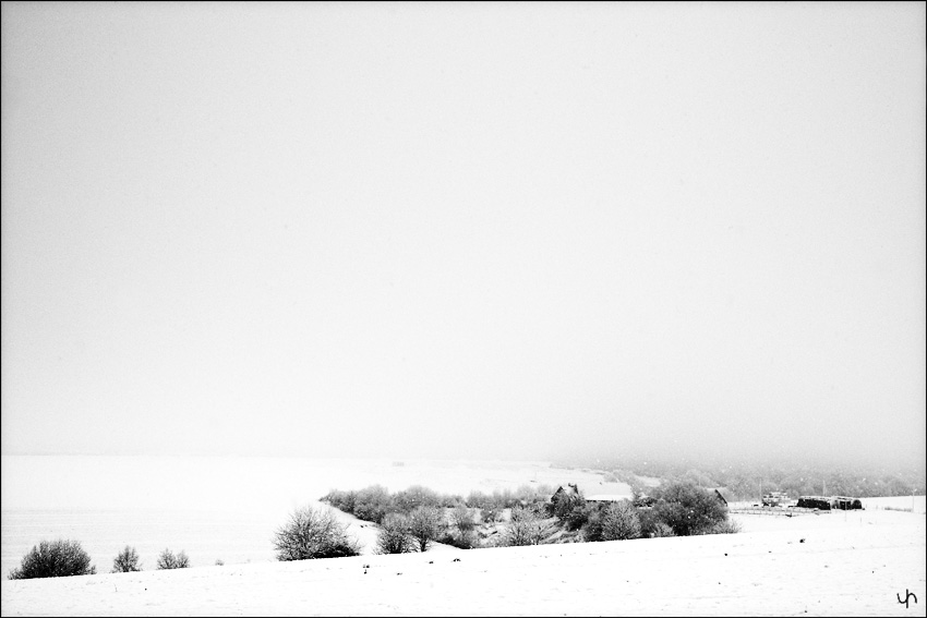 Winter Black and White